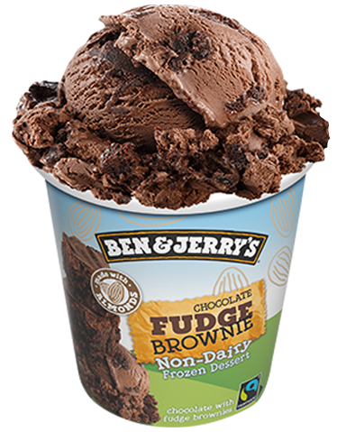 Chocolate Fudge Brownie Non-Dairy Pint