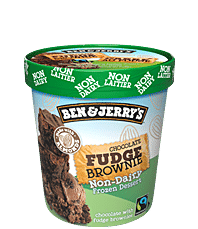 Chocolate Fudge Brownie Non-Dairy Non-Dairy Frozen Dessert Pints