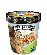 Coffee Caramel Fudge Non Dairy Non-Dairy Frozen Dessert Pints