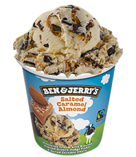 Salted Caramel Almond Original Ice Cream Pints